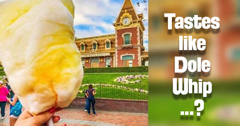 New 'Dole Whip' Cotton Candy at Disney's California ...