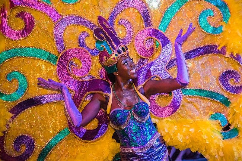 Peacock Parade C