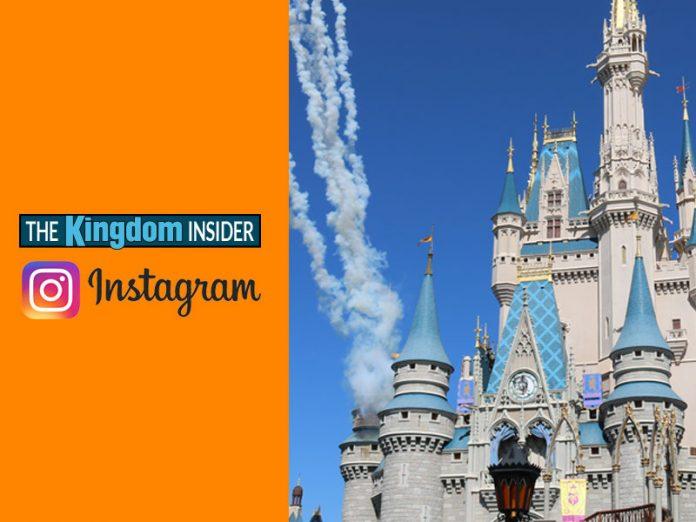 Disney Instagrammer
