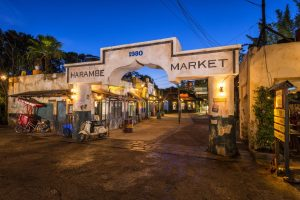 Dining in Disney World is festive and fun at Harambe Market