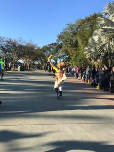 Runners dress up in costumes for Run Disney races. Here is Simba and Rafiki on the WDW Marathon course.