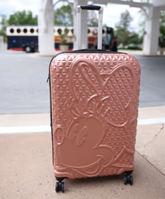 Ryan Ranahan Disney FUL luggage